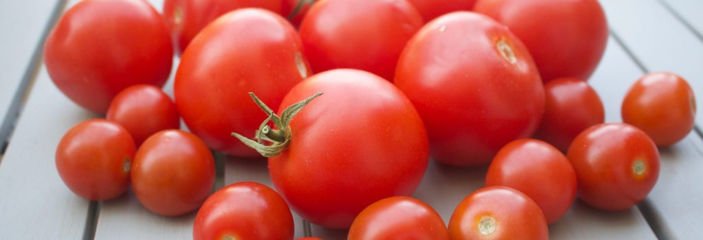 samenfeste Tomaten